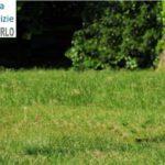 Piano delle alienazioni, il Comune cede una piccola porzione di terreno in cambio della sistemazione di un giardino