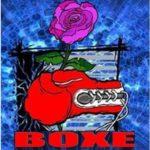 Teatro Politeama: Boxe, una rosa nel pugno