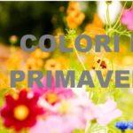 """Conferenza stampa di presentazione """"Colori di primavera"""""""