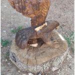 Danneggiata l'ala dell'aquila, una delle sculture in legno del giardino fiabesco di via Riva