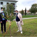 Compie trent'anni e dona trenta alberi da frutto al Comune