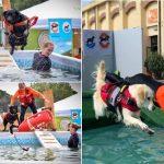 Il parco della piscina di via Roma si apre alla città: domani prima iniziativa autunnale